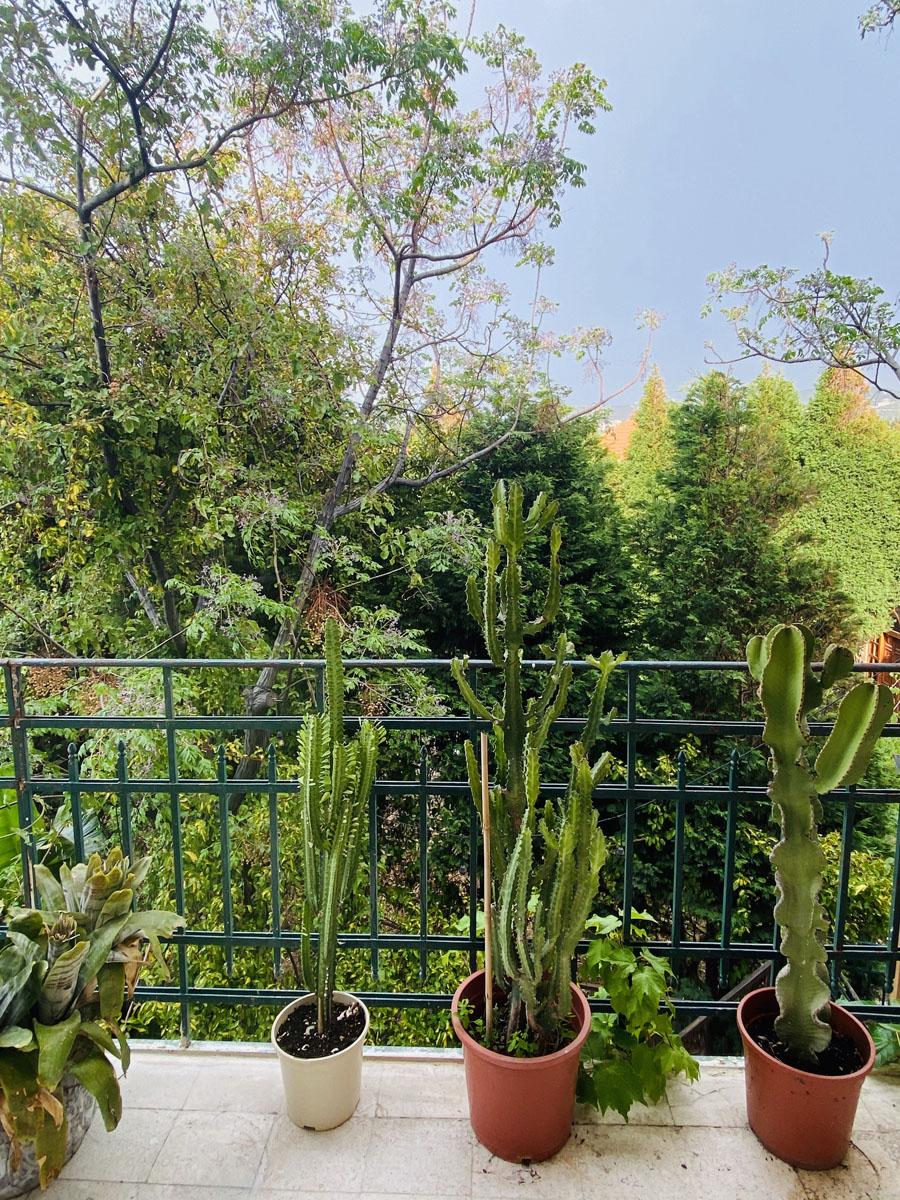 04. Balcony 5